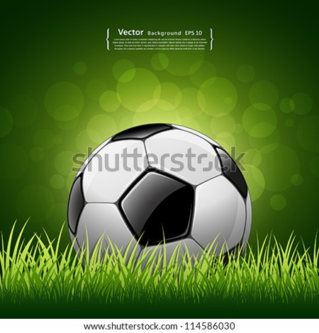 Soccer ball on grass background, vector illustration - stock vector