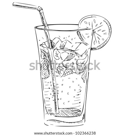 Soda glass with citrus segment and ice cubes. Hand drawing sketch vector illustration - stock vector