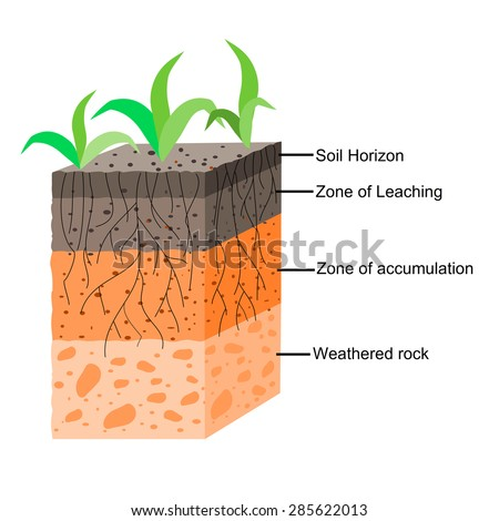 Soil profile stock images royalty free images vectors for Why the soil forms layers in water