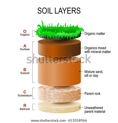 Soil layers soil mixture plant residue stock vector for What is dirt composed of