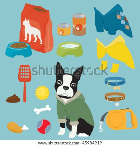 Some cute stuff for a puppy of Boston Terrier (male)