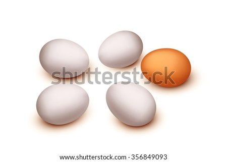 some group of  eggs isolated on white background