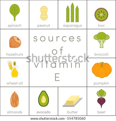Sources of vitamin E, vector food icons for infographic