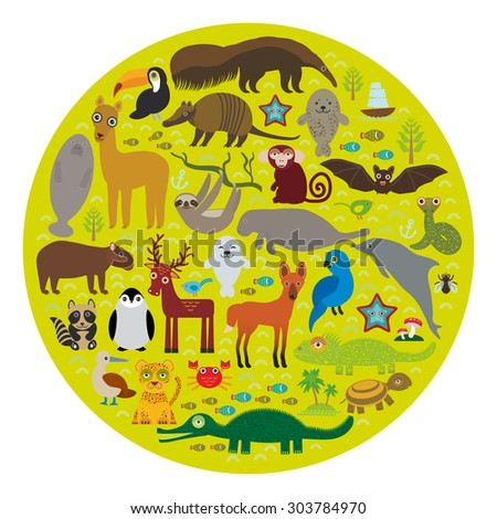 South America sloth anteater toucan lama bat seal armadillo boa manatee monkey dolphin Maned wolf raccoon jaguar Hyacinth macaw lizard turtle crocodile deer penguin Blue-footed booby Capybara. Vector - stock vector