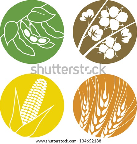 Soybeans, Cotton, Corn and Wheat - stock vector