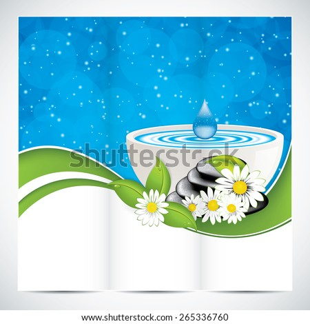 Spa salon beauty brochure design with leaves bowl and stones - stock vector