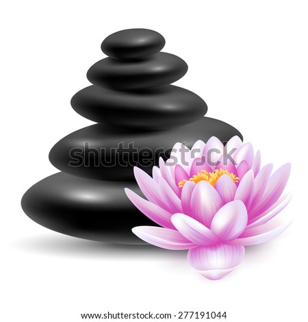 Spa still life with black massage stones and pink lotus flower. Vector illustration. Isolated on white background. - stock vector