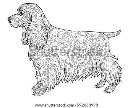 english springer spaniel coloring pages - photo#24