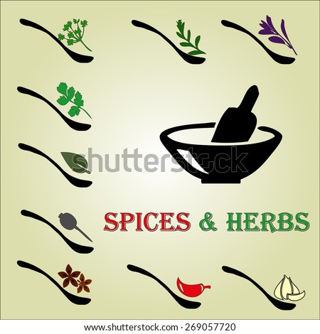 Spices and herbs - stock vector