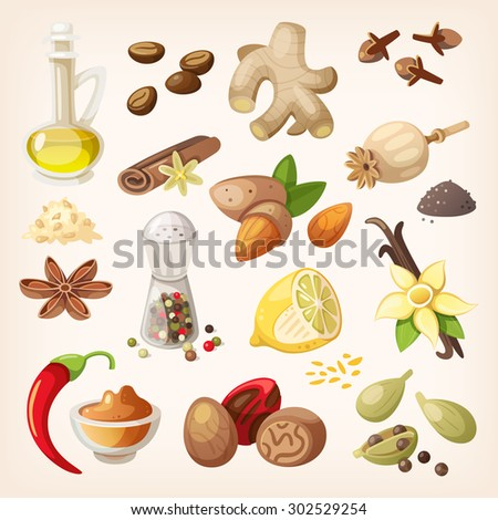 Spices, condiments and herbs decorative elements and icons. Seeds, fruit, flower buds, leaves, blends and roots of condiment plants. - stock vector