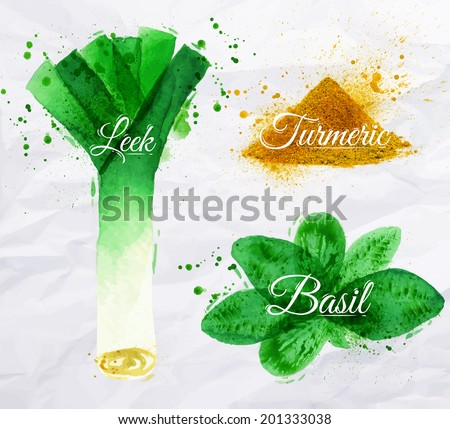Spices herbs set drawn watercolor blots and stains with a spray leeks, basil, turmeric - stock vector