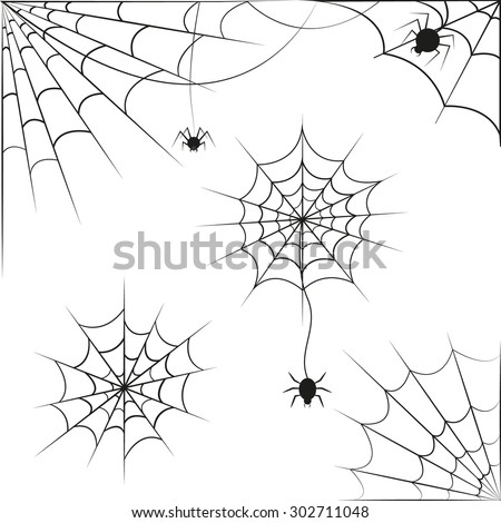 Spider web on white background. Vector