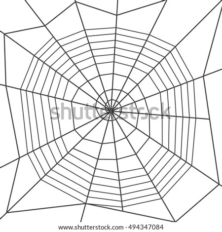 Spider web, spiral orb web type. Halloween decoration.