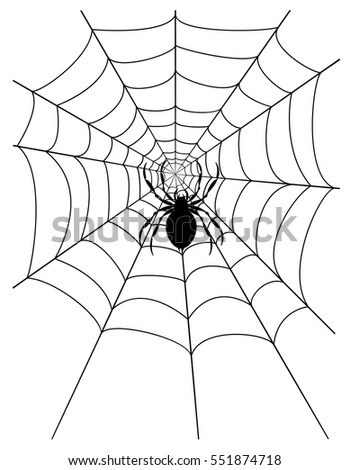 spider web stock vector illustration isolated on white background