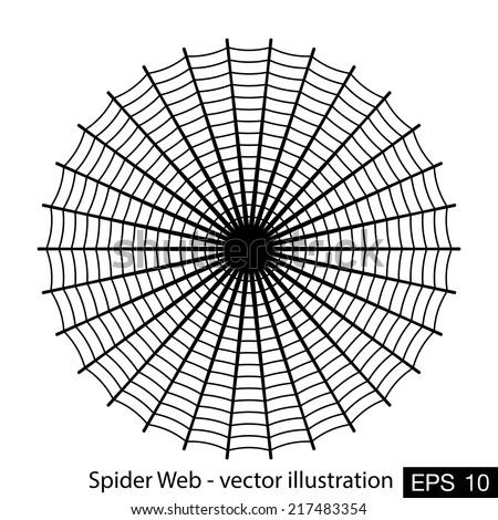 Spider web- vector illustration - stock vector