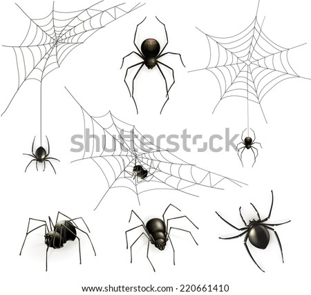 Spiders and spider web, vector set - stock vector