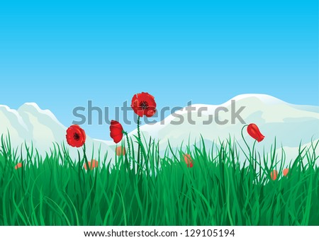 Spring at mountains. Red spring poppies and green grass on background with mountains. - stock vector