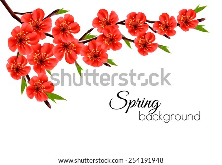 Spring background with blossom brunch of red flowers. Vector - stock vector