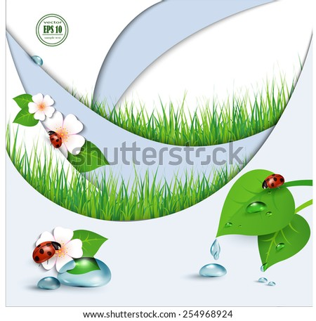 Spring background with flowers, grass and a ladybug. Vector. - stock vector