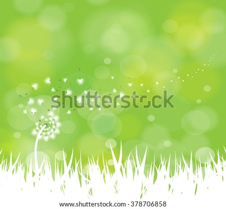 spring background with white dandelions