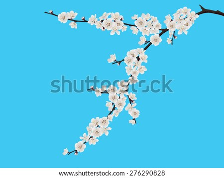 Spring blooming cherry branch on blue background - stock vector