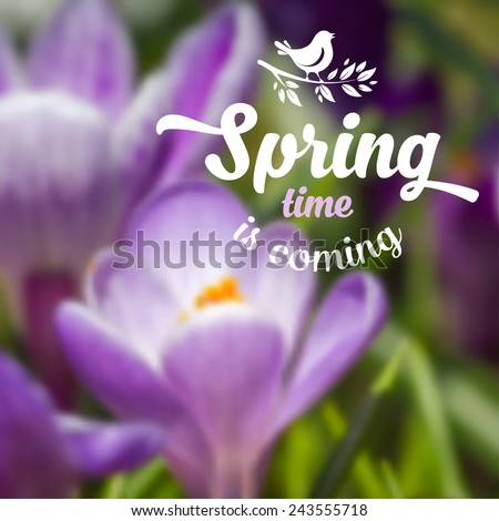 Spring blurred background with beautiful crocus flower. Vector illustration. - stock vector