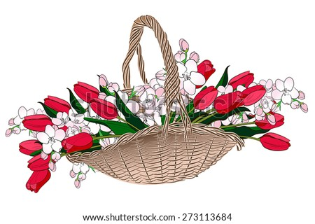Spring bouquet of tulips and Apple blossoms in a wicker basket - stock vector
