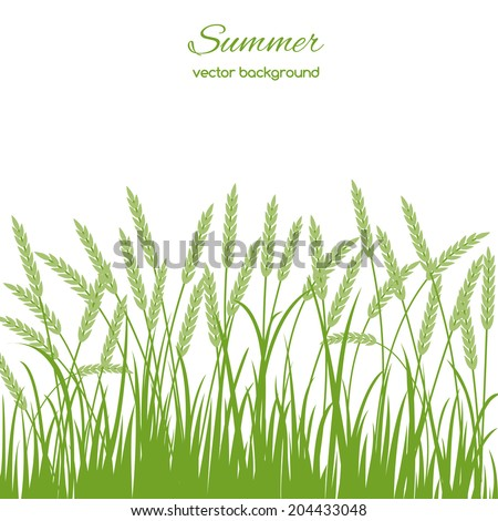 Spring card with grass and spikelets on white background