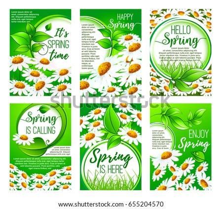 Spring daisy flower greeting card set. Springtime holidays greeting wishes floral frame of green leaf and grass with blooming chamomile flower field on background. Spring season themes design