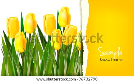 Spring flower background with ripped paper. Vector illustration. - stock vector