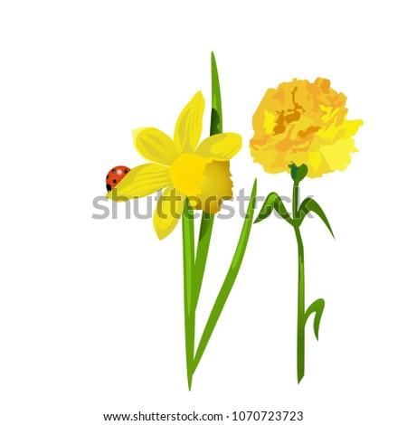 Spring flowers daffodils carnations sitting on stock vector spring flowers daffodils and carnations sitting on a leaf ladybug mightylinksfo