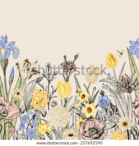 Spring flowers. Seamless floral border. Poppies, iris, tulips, carnations, primroses, daffodils on a beige background. Garden bed. Vintage vector illustration. - stock vector