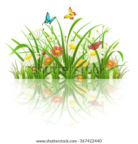 Spring grass, flowers and butterflies with reflection on white - stock vector