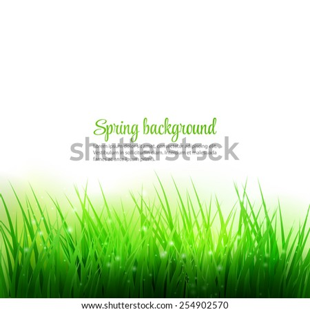Spring grass natural background.  - stock vector