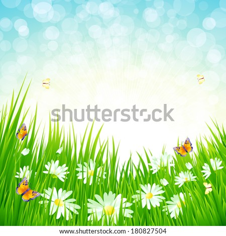 Spring grass vector background - stock vector