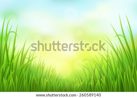 Spring green grass background, vector illustration - stock vector