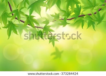 Spring green maple leaves background, vector illustration - stock vector
