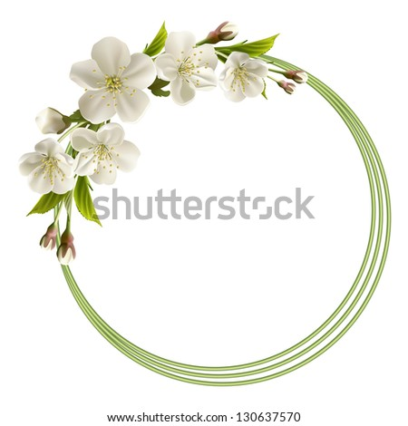 Spring header with white cherry flowers, buds and copy space. Vector illustration - stock vector