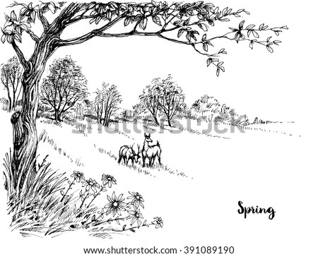 Spring in the woods sketch - stock vector