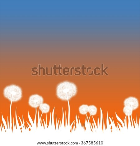 Spring landscape with pale grass and white dandelions with orange and blue sky  - stock vector