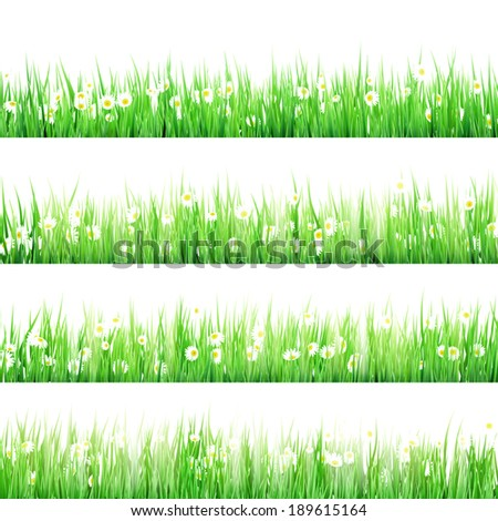 Spring Meadow with Daisies. And also includes EPS 10 vector - stock vector