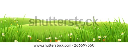 Spring meadow with green grass and flowers - stock vector