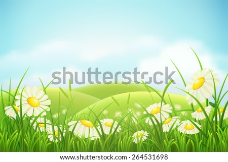 Spring meadow with green grass, hills and daisies - stock vector