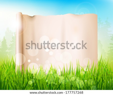 Spring meadow with tall grass and empty paper  - stock vector