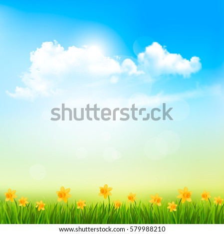 Spring Nature Background With A Green Grass And Blue Sky With Clouds. Vector.