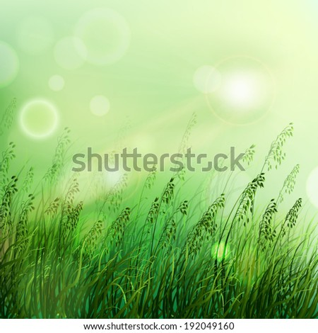 Spring or summer season abstract nature vector background with dawn grass in the back. - stock vector