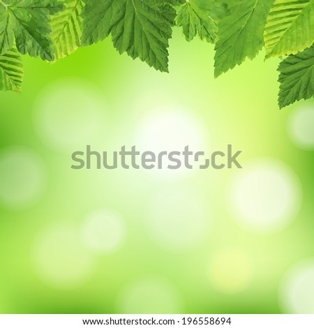 Spring Poster, With Gradient Mesh, Vector Illustration