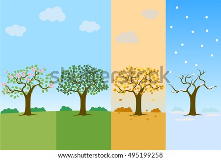 planting tree process infographic flat design stock vector. Black Bedroom Furniture Sets. Home Design Ideas