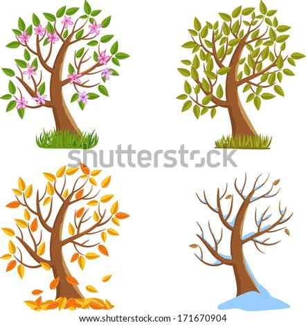 Spring, Summer, Autumn and Winter Season Tree Illustration  - stock vector
