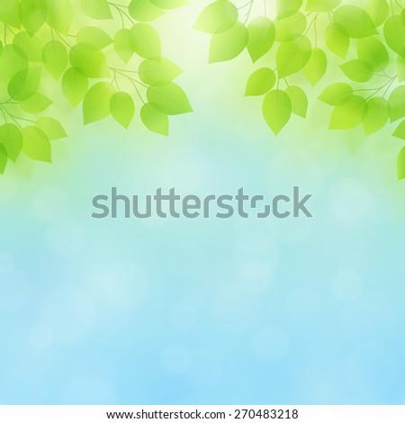 Spring/Summer Vector Background - stock vector